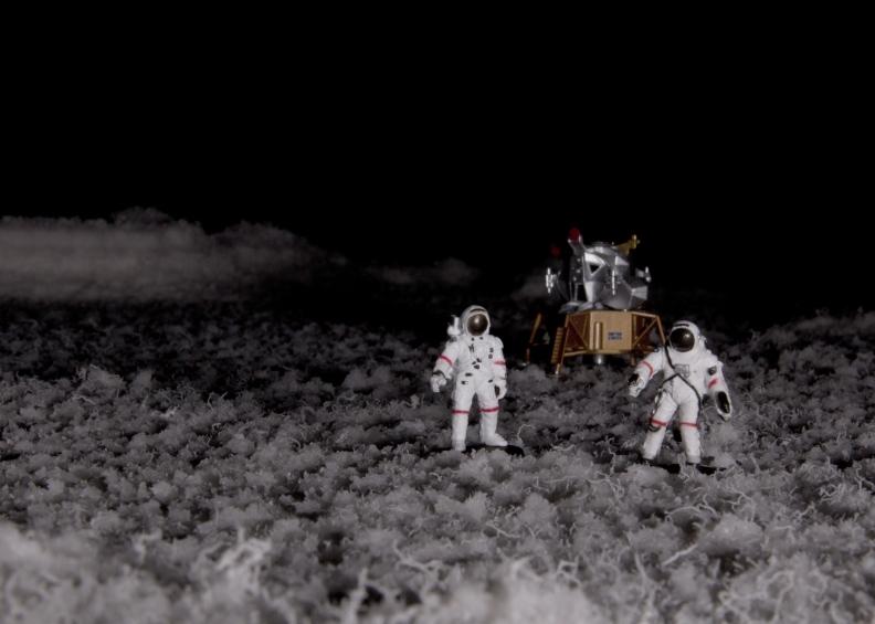 astronauts lunar module on stringy salt planet