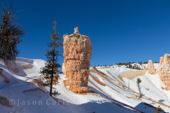 Bryce Canyon National Park in Winter